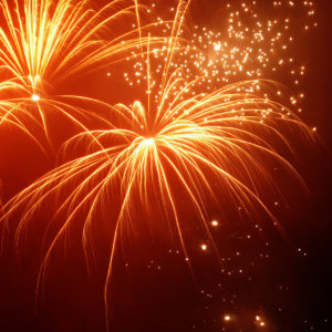 Alles Gute im neuen Jahr von Elita.ch